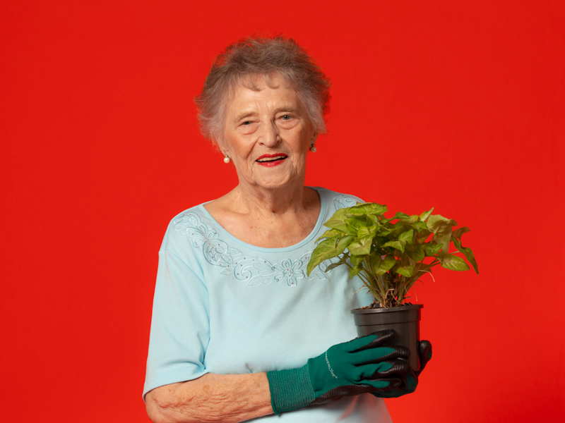 senior woman holding a pot plant