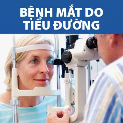 Vietnamese diabetic eye disease booklet
