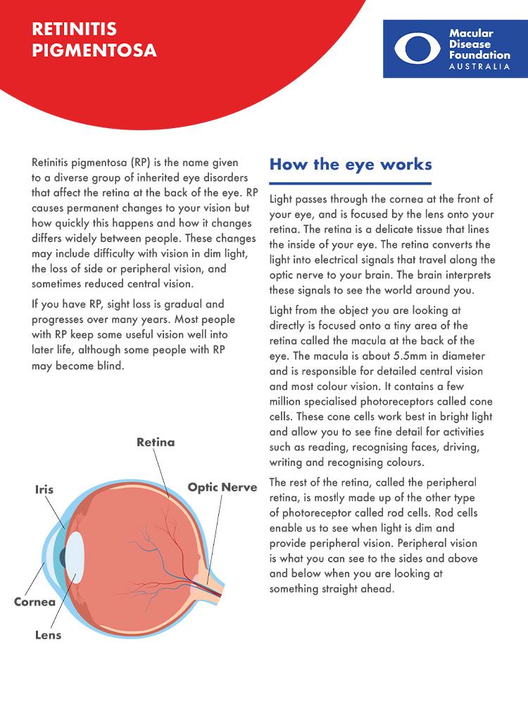 cover of retinitis pigmentosa fact sheet